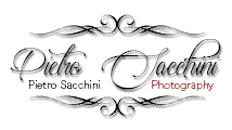 pietrosacchini.it logo